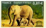 La défense des éléphants