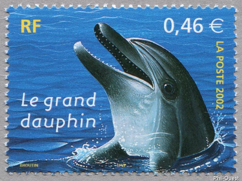 Alerte dauphins roses!
