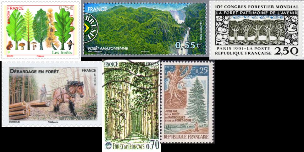 Les timbres de la forêt