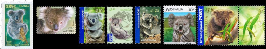 Aidons le koala